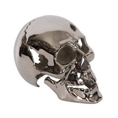 French Nickel Plated Skull, 1950s