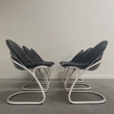 Set of 6 Sabrina Chairs by Gastone Rinaldi for Thema, 1970s