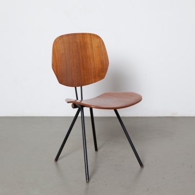 S88 folding chair by Osvaldo Borsani for Tecno, 1950s