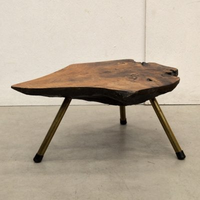 Trunk Tree coffee table by Carl Auböck, 1950s