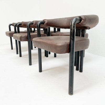 Rare set of 6 Nienkämper for De Sede dining chairs, 1960s