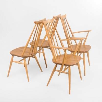 Set of 4 Moustache chairs by Lucian Ercolani for Ercol, 1960's