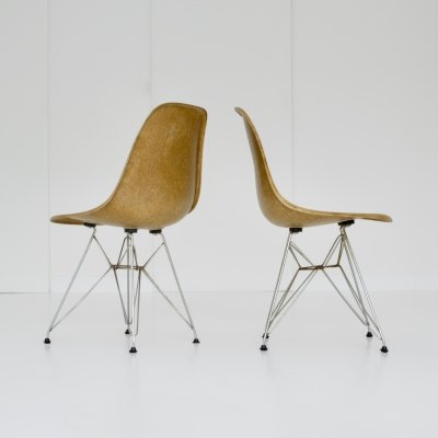 Eames DSR Dining Height Side chair with Rod Base, 1970s