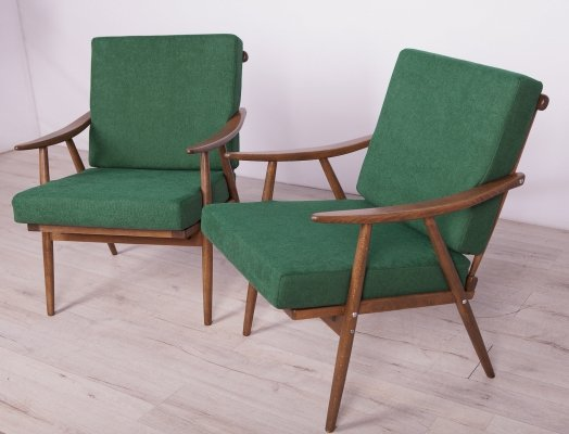 Pair of Vintage Armchairs by Ton Czech, 1960s