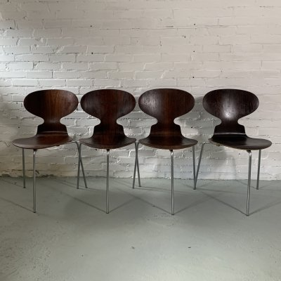 Set of 4 Rosewood Ant Chairs by Arne Jacobsen for Fritz Hansen, 1960s