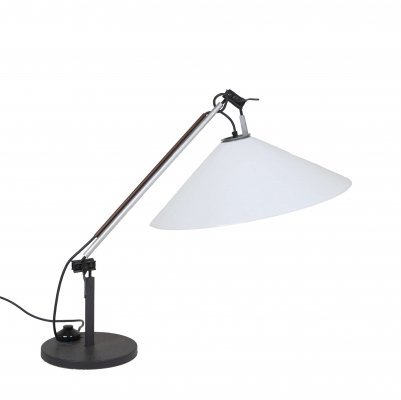 Adjustable 'Aggregate' Table Lamp by Enzo Mari & Giancarlo Fassina for Artemide