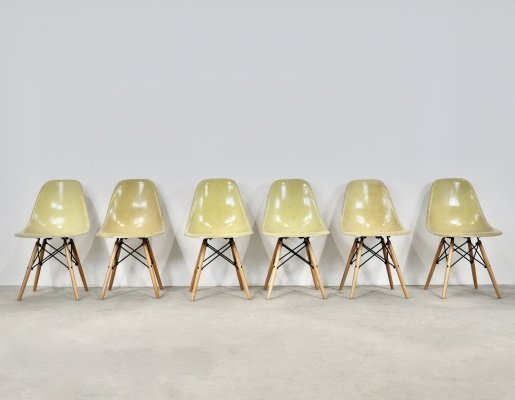 Set of 6 'DSW' Chairs by Charles & Ray Eames for Herman Miller, 1970s