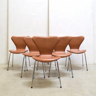 Set of 6 3107 Grace Walnut dining chairs by Arne Jacobsen for Fritz Hansen, 1990s