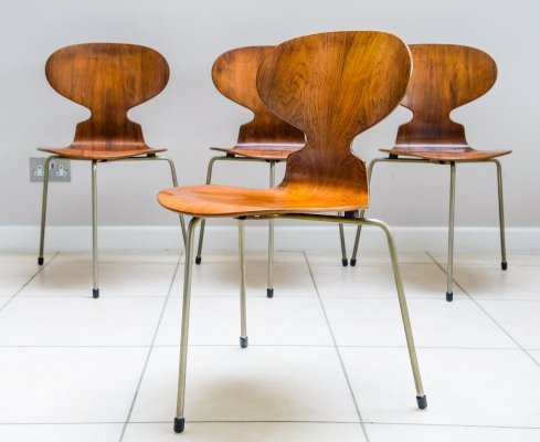 Set of 4 Rosewood Ant Chairs by Arne Jacobsen for Fritz Hansen, 1950s