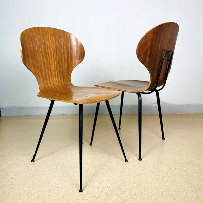 Mid-century 'Lulli' Chairs by Carlo Ratti for ILC Lissone, Italy 1970